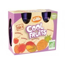 COOL FRUITS MANGUES ANANAS