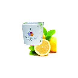 Sorbet Citron 500ml