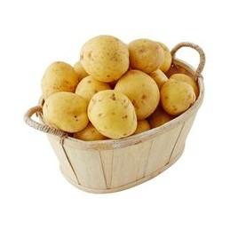 Filet 2.5 Kg Pdt Chaire Tendre